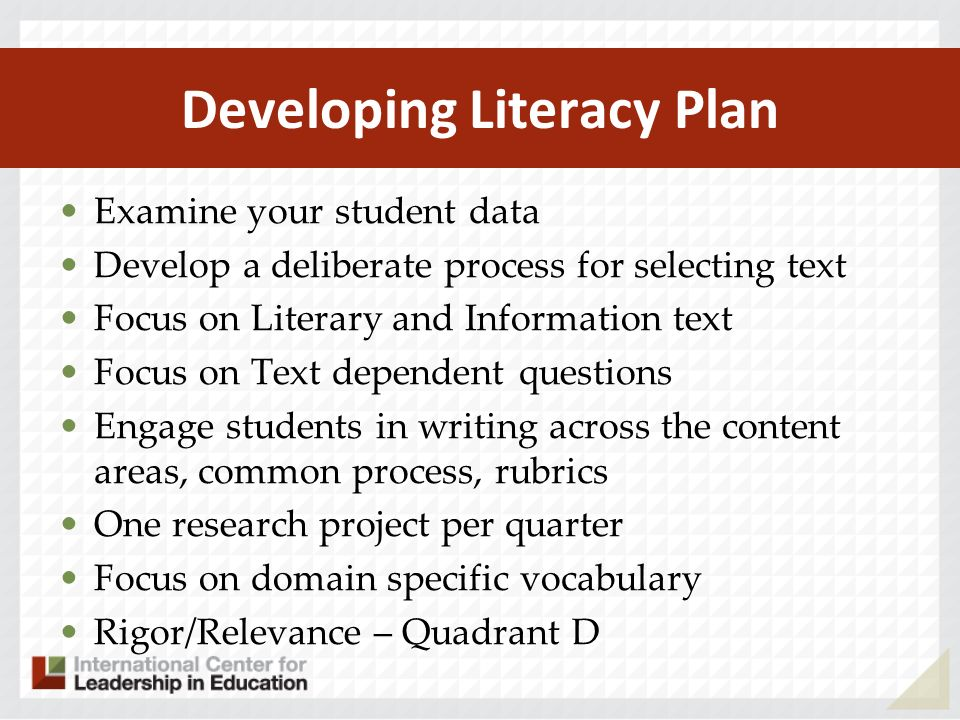 Developing Literacy Plan