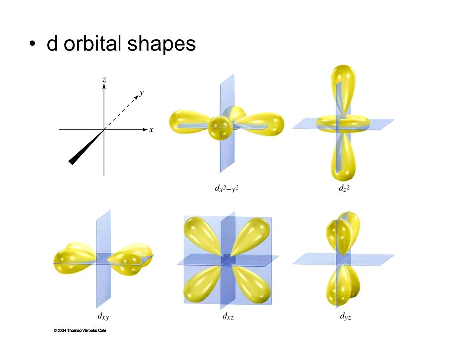 d orbital shapes