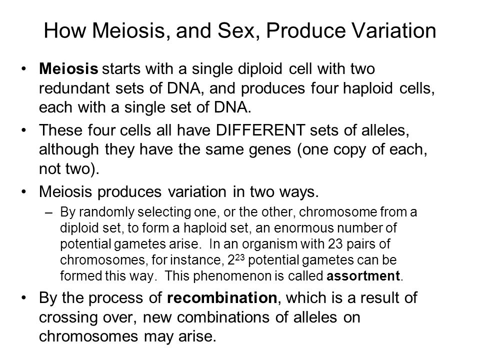 How Meiosis, and Sex, Produce Variation
