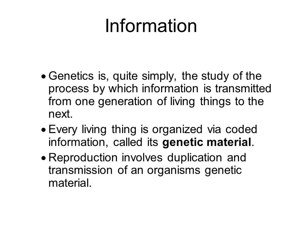 Information Genetics is, quite simply, the study of the process by which information is transmitted from one generation of living things to the next.