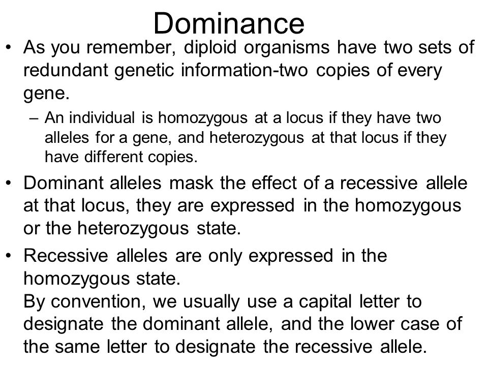 Dominance As you remember, diploid organisms have two sets of redundant genetic information-two copies of every gene.
