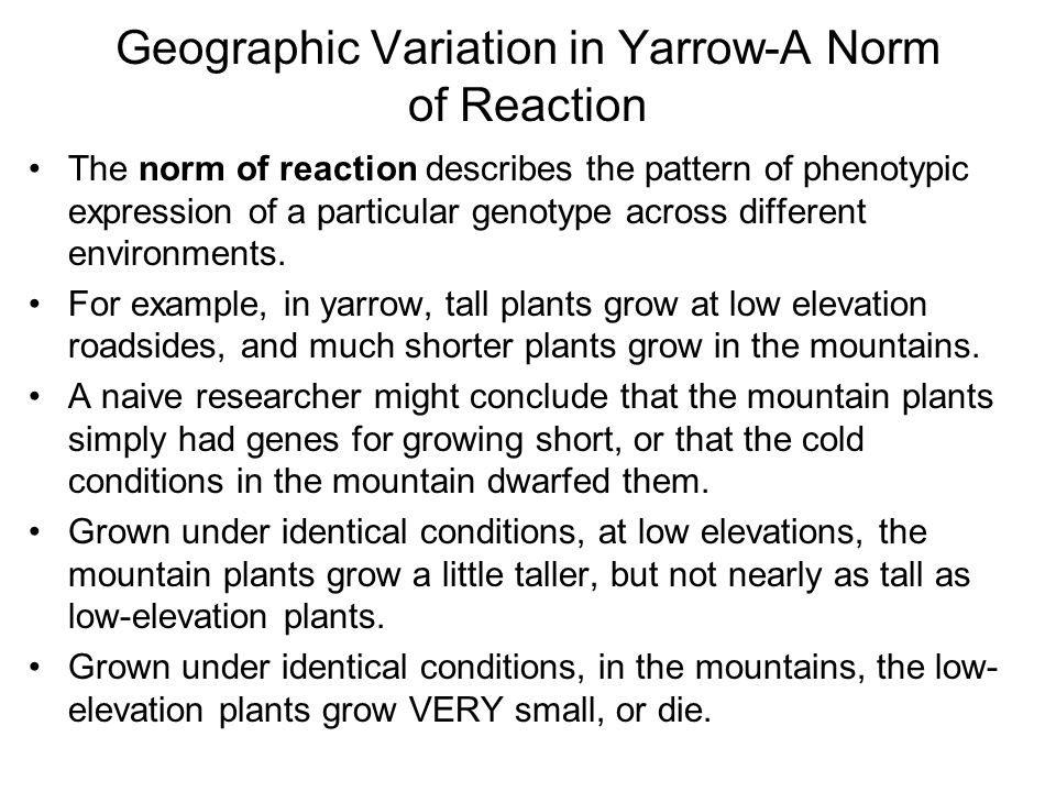 Geographic Variation in Yarrow-A Norm of Reaction