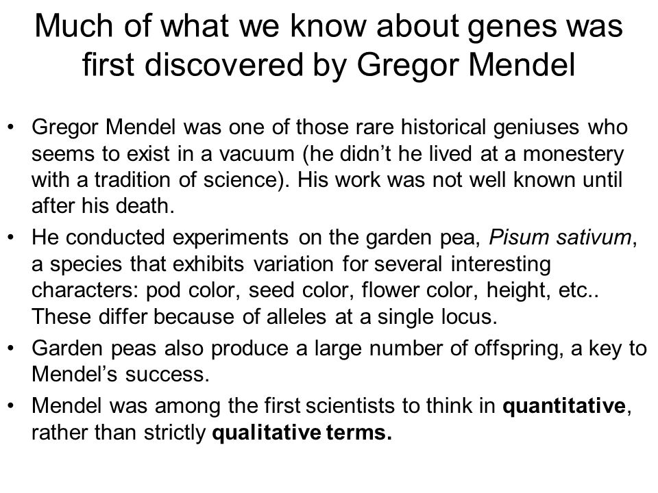 Much of what we know about genes was first discovered by Gregor Mendel