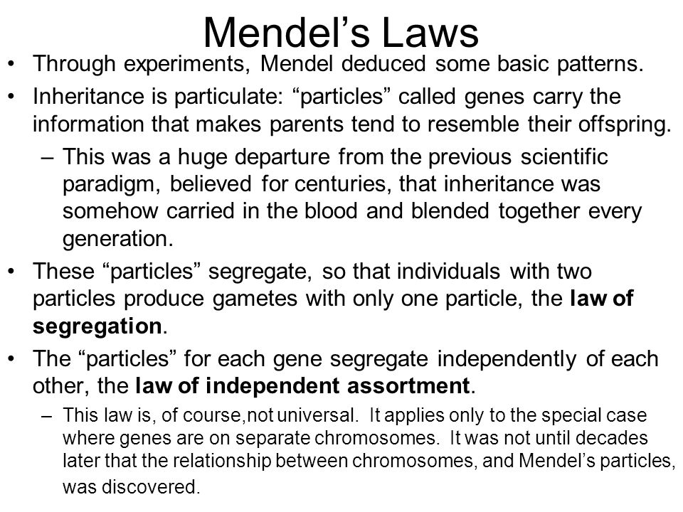 Mendel's Laws Through experiments, Mendel deduced some basic patterns.