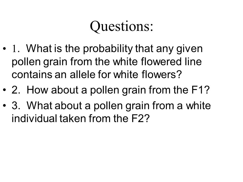 Questions: 1. What is the probability that any given pollen grain from the white flowered line contains an allele for white flowers