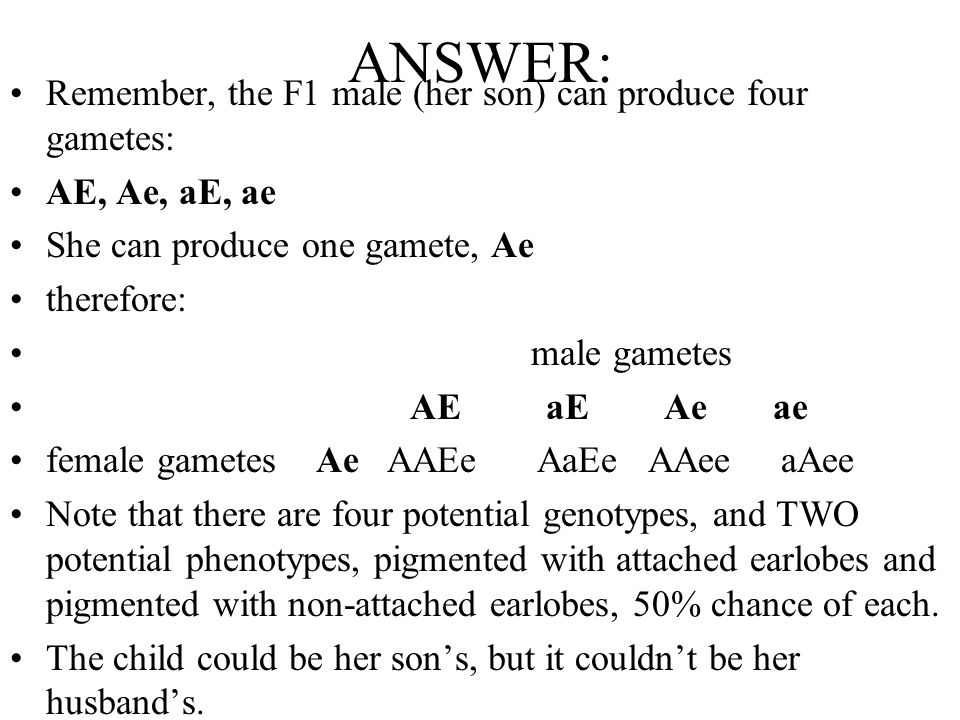 ANSWER: Remember, the F1 male (her son) can produce four gametes: