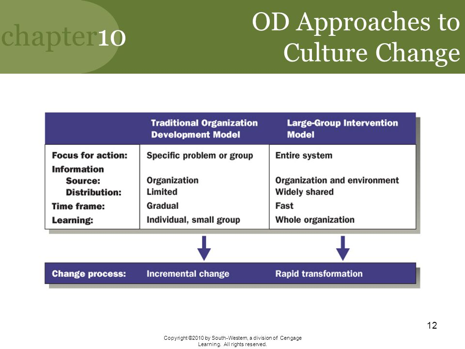 OD Approaches to Culture Change