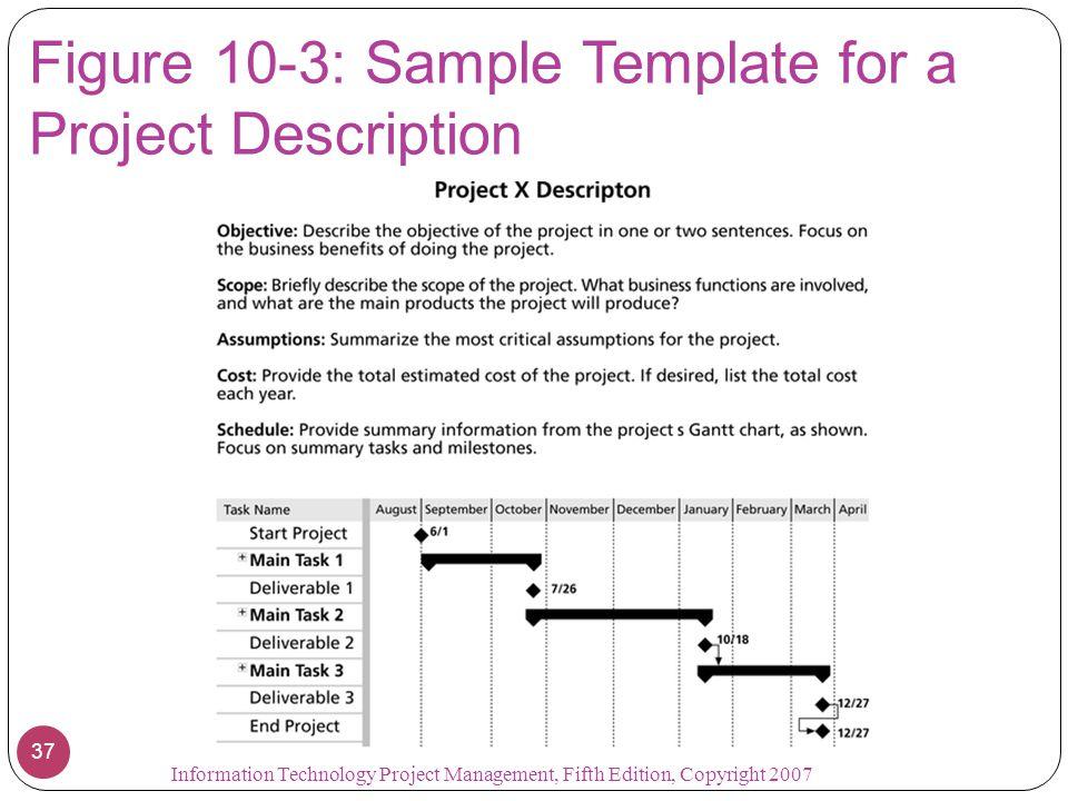 Figure 10-3: Sample Template for a Project Description