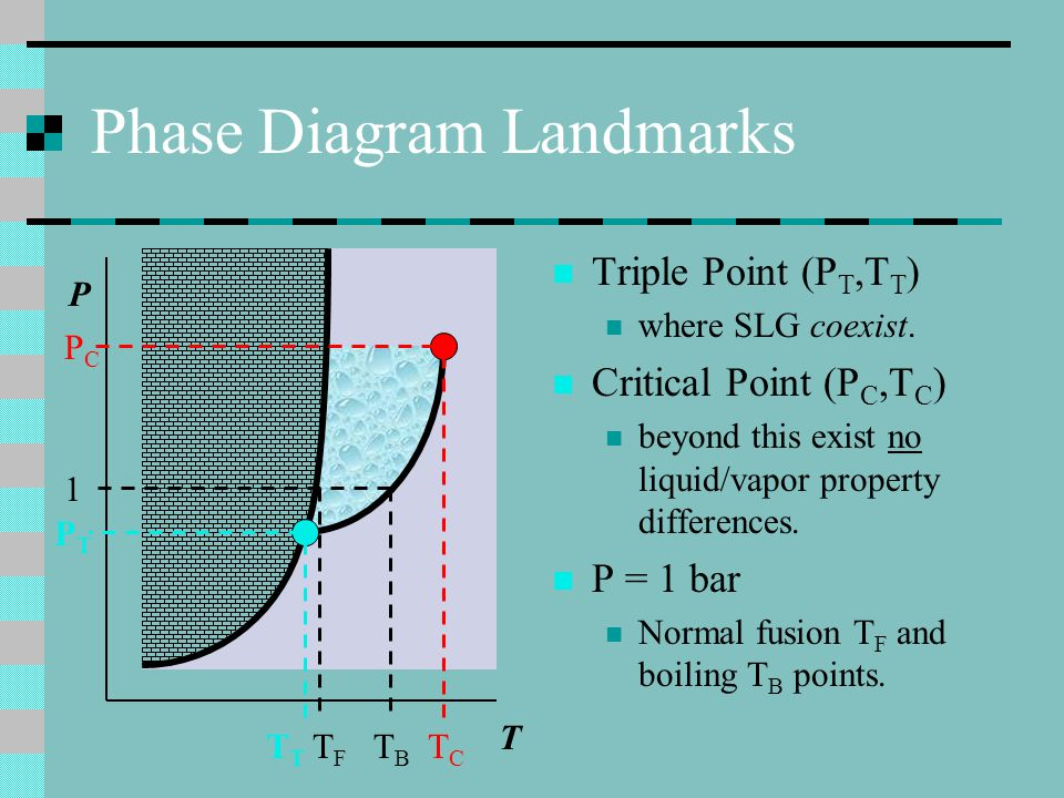 Phase Diagram Landmarks