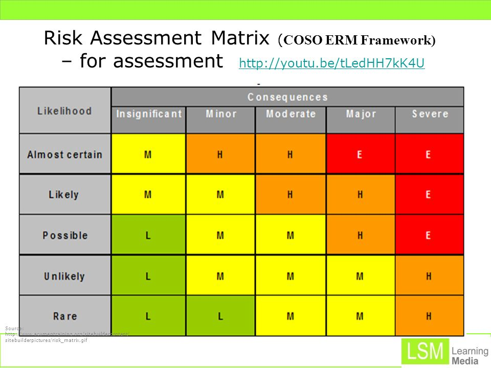 Risk Assessment Matrix (COSO ERM Framework)