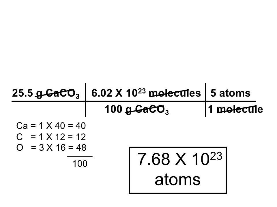 7.68 X 1023 atoms 25.5 g CaCO3 6.02 X 1023 molecules 5 atoms