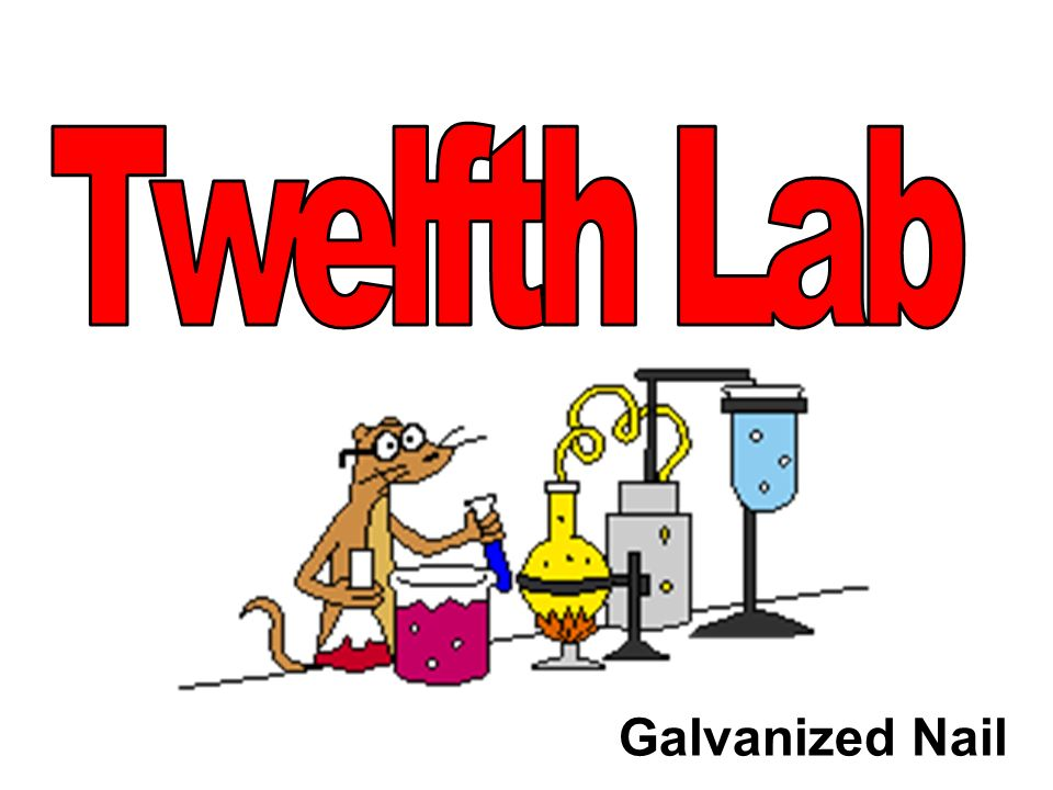 Twelfth Lab Galvanized Nail