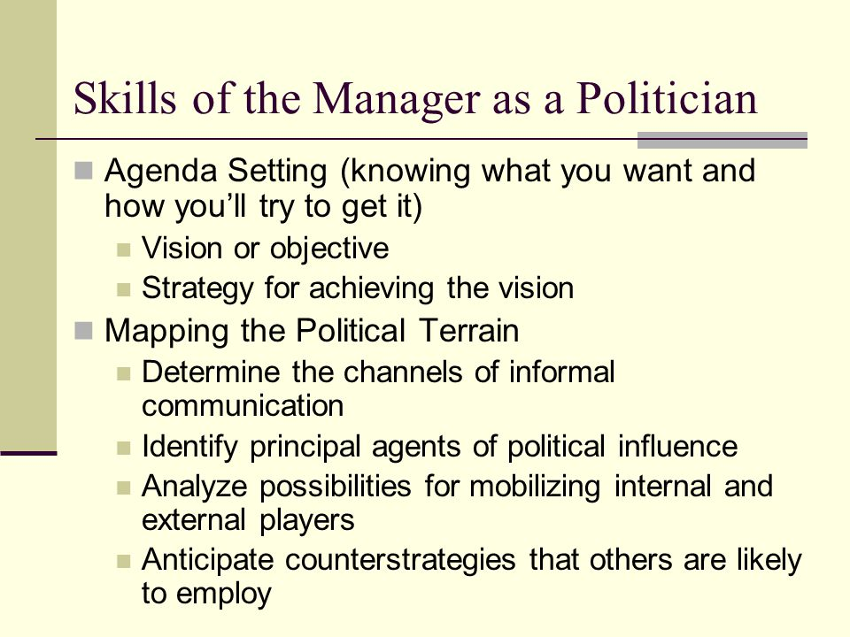 Skills of the Manager as a Politician