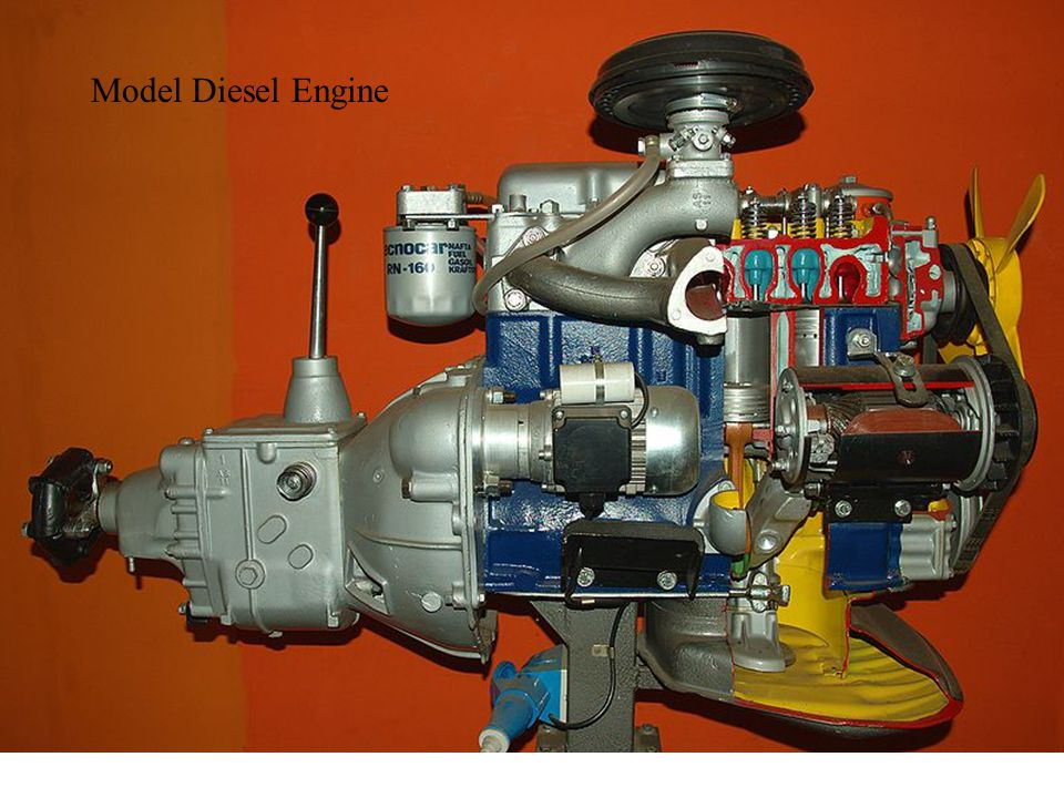 Model Diesel Engine