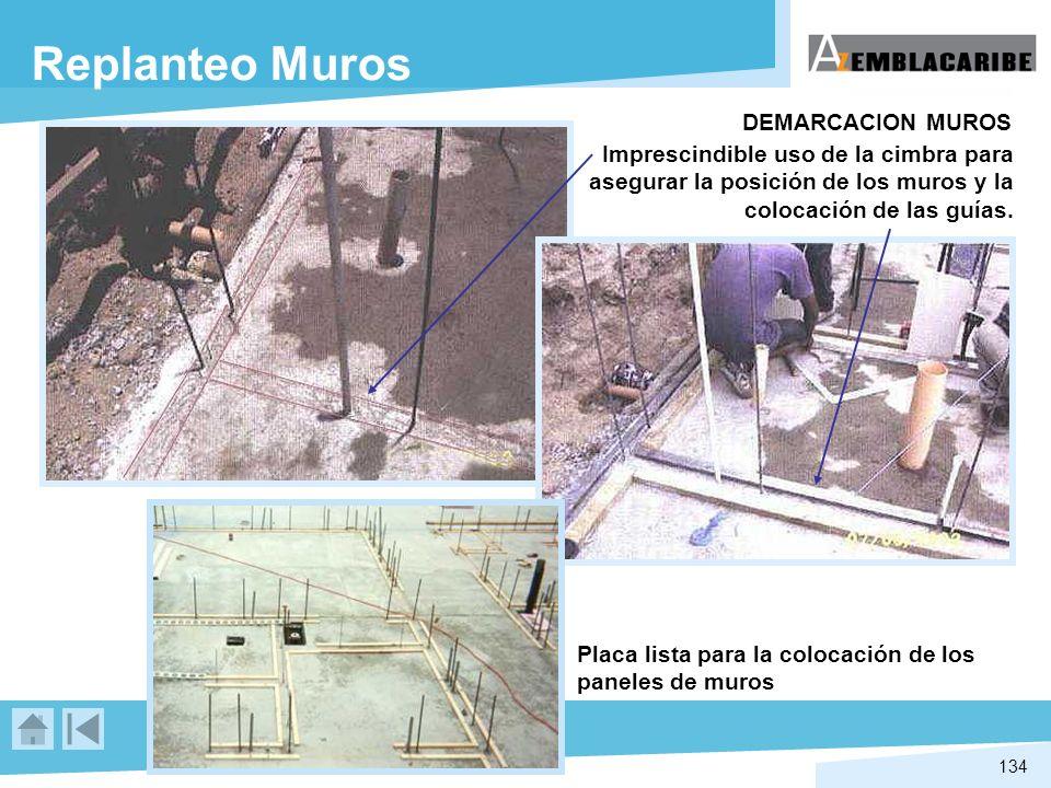 Replanteo Muros DEMARCACION MUROS