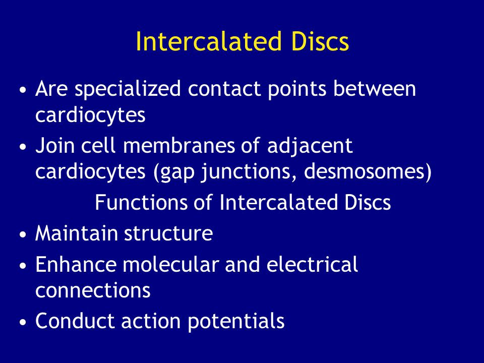 Intercalated Discs Are specialized contact points between cardiocytes