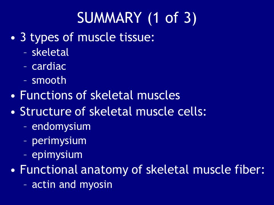 SUMMARY (1 of 3) 3 types of muscle tissue: