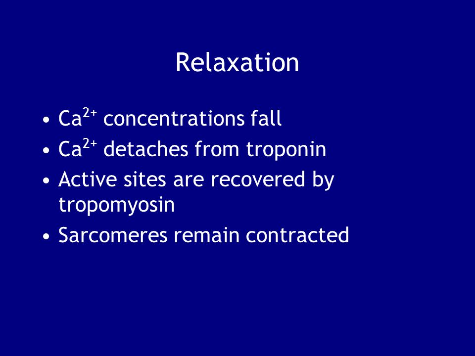 Relaxation Ca2+ concentrations fall Ca2+ detaches from troponin