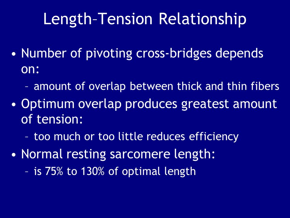 Length–Tension Relationship