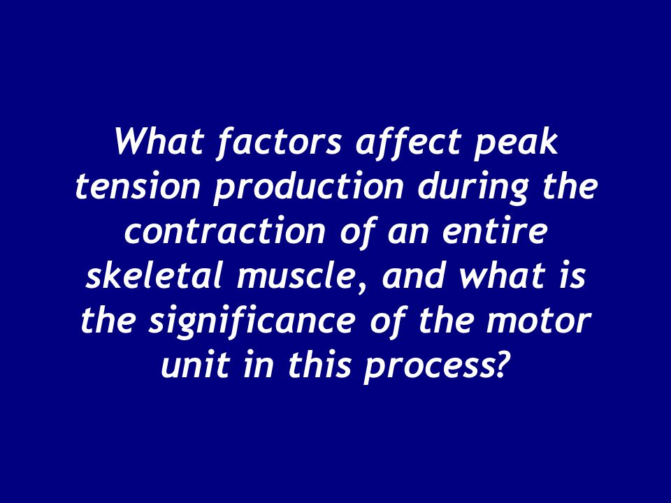 What factors affect peak tension production during the contraction of an entire skeletal muscle, and what is the significance of the motor unit in this process