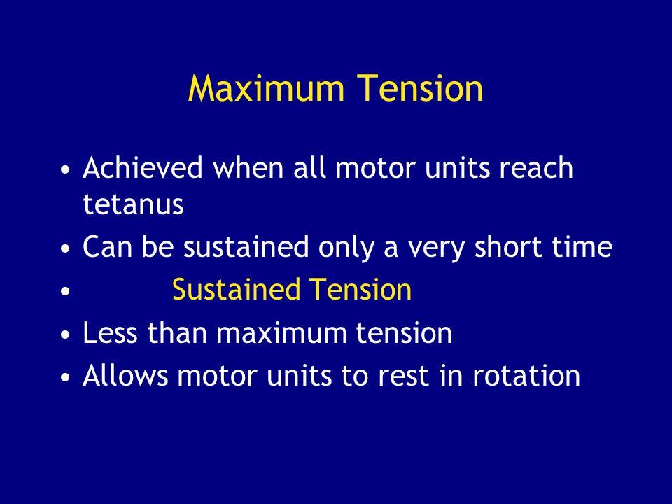 Maximum Tension Achieved when all motor units reach tetanus