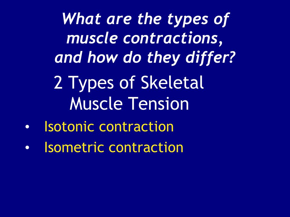 What are the types of muscle contractions, and how do they differ