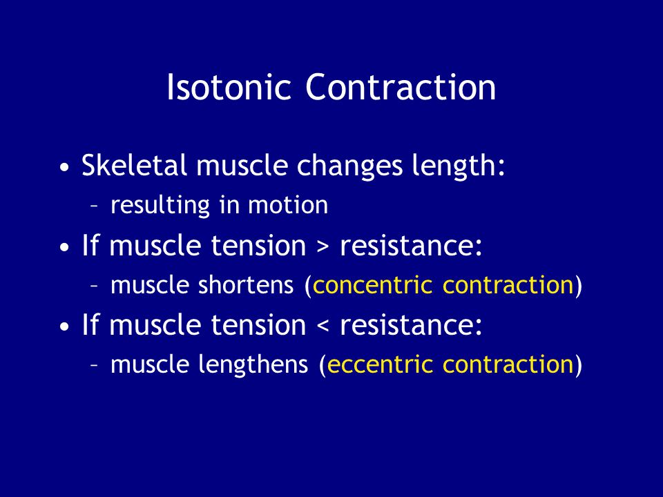Isotonic Contraction Skeletal muscle changes length: