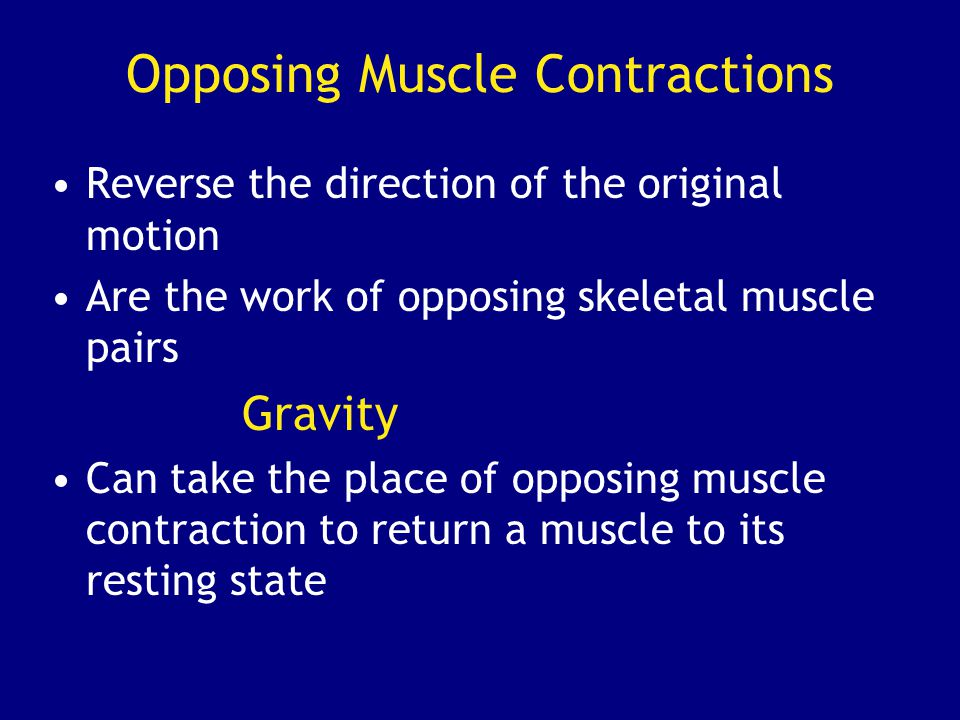 Opposing Muscle Contractions