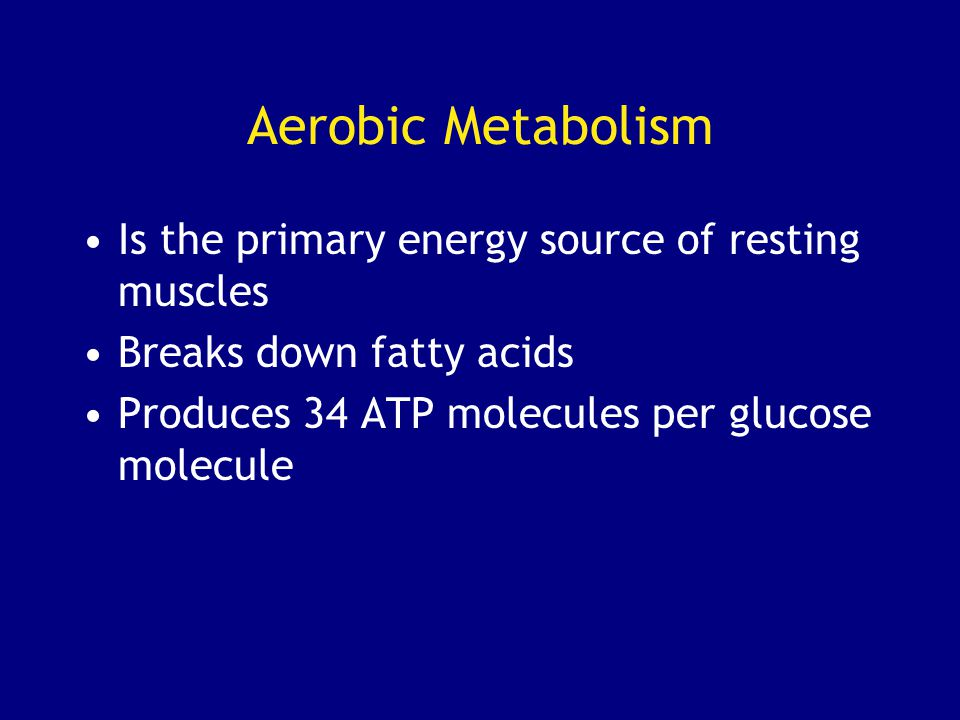 Aerobic Metabolism Is the primary energy source of resting muscles