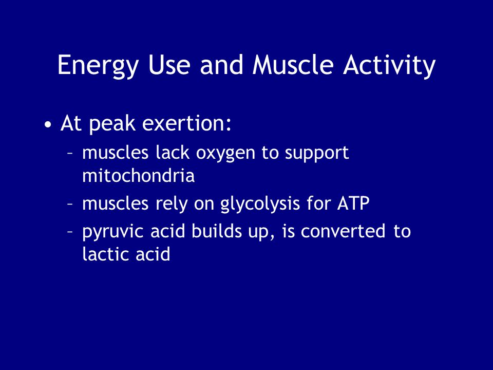 Energy Use and Muscle Activity