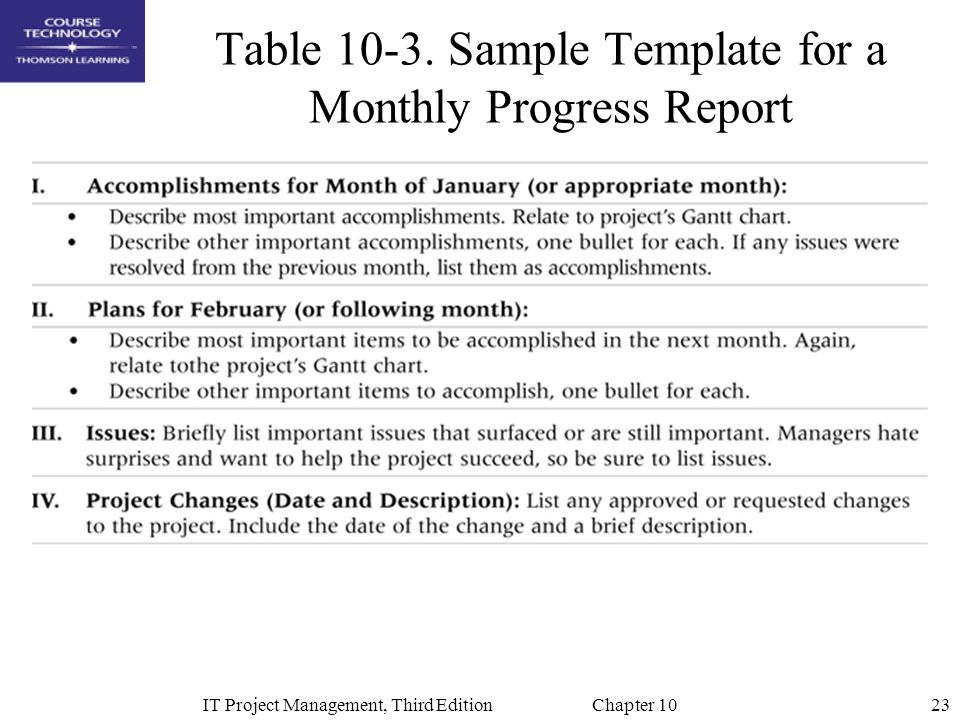 Table 10-3. Sample Template for a Monthly Progress Report