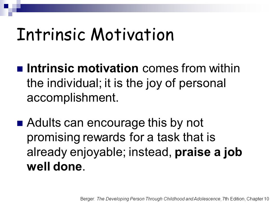 Intrinsic Motivation Intrinsic motivation comes from within the individual; it is the joy of personal accomplishment.