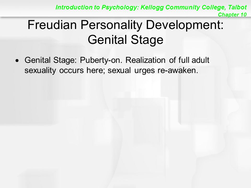 Freudian Personality Development: Genital Stage