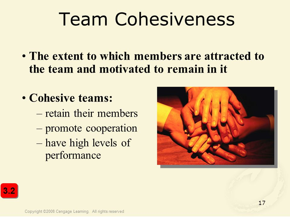 Team Cohesiveness The extent to which members are attracted to the team and motivated to remain in it.