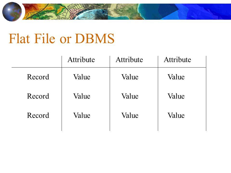 Flat File or DBMS Attribute Attribute Attribute Record Value Record