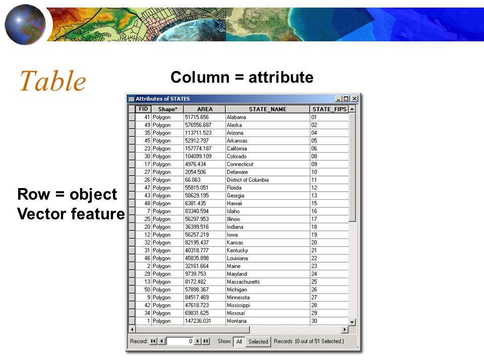 Table Column = attribute Row = object Vector feature