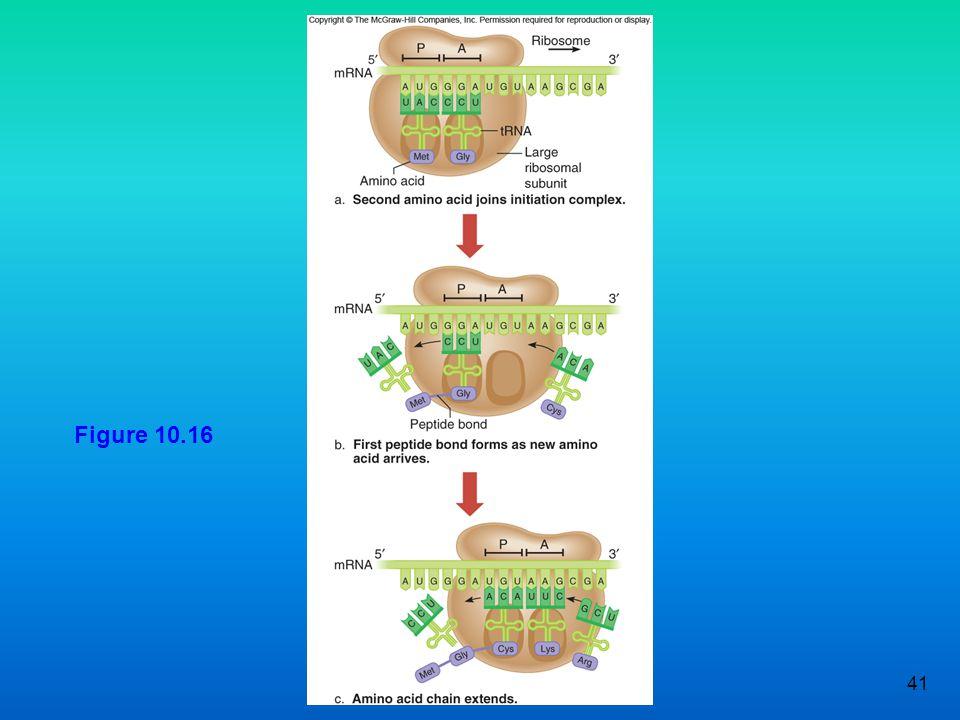 Figure 10.16 41