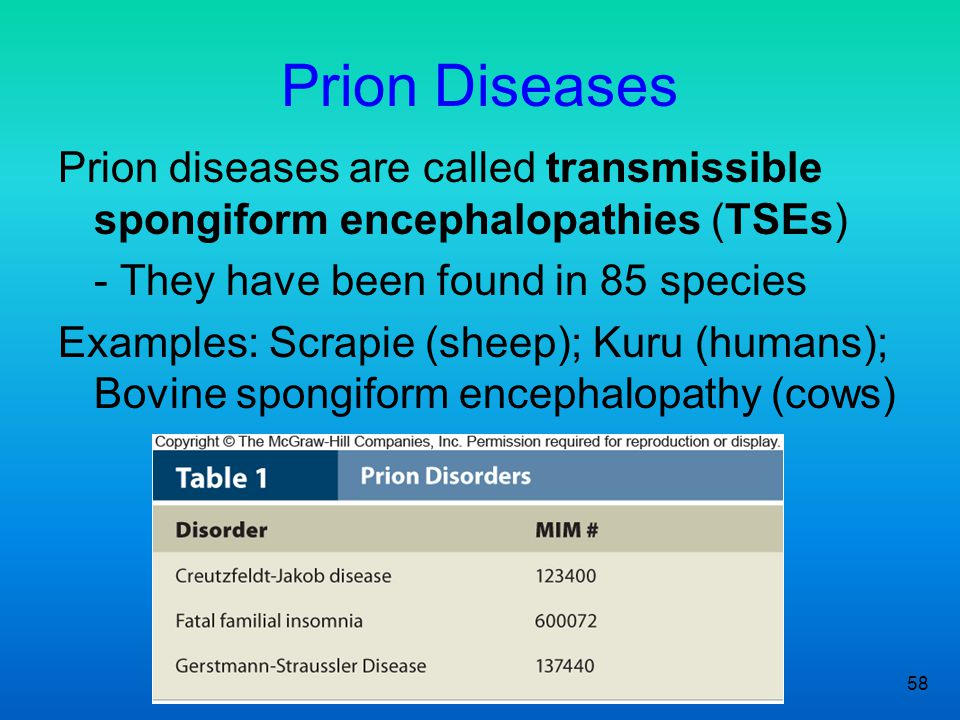 Prion Diseases Prion diseases are called transmissible spongiform encephalopathies (TSEs) - They have been found in 85 species.