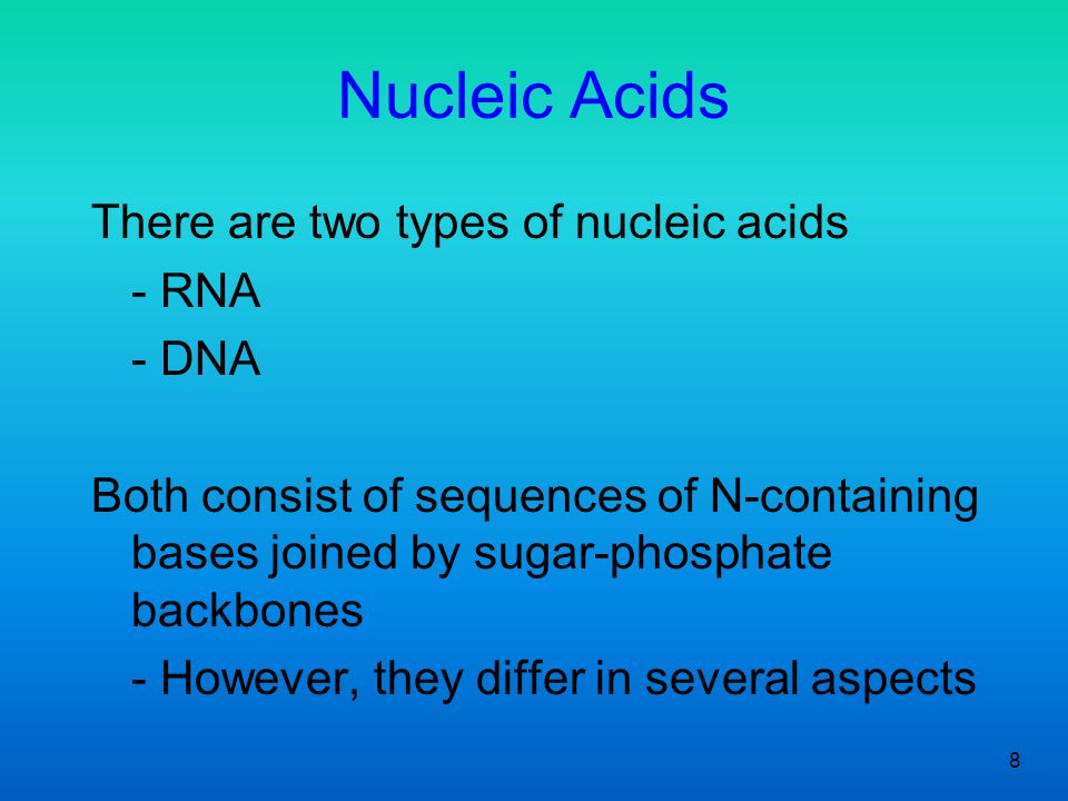 Nucleic Acids There are two types of nucleic acids - RNA - DNA
