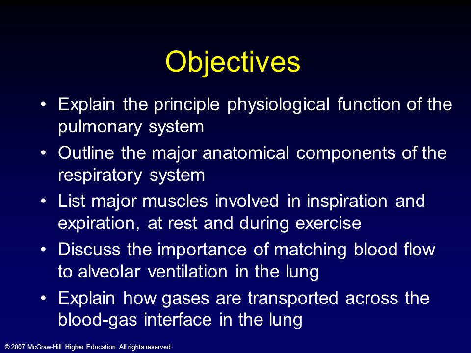 Objectives Explain the principle physiological function of the pulmonary system. Outline the major anatomical components of the respiratory system.