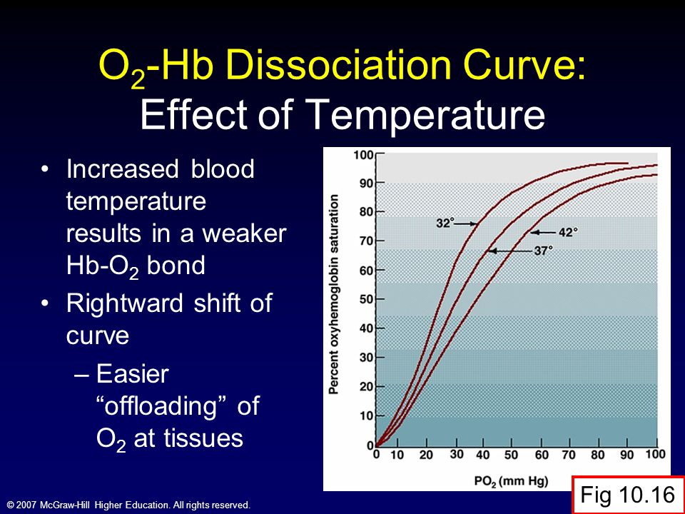 O2-Hb Dissociation Curve: Effect of Temperature