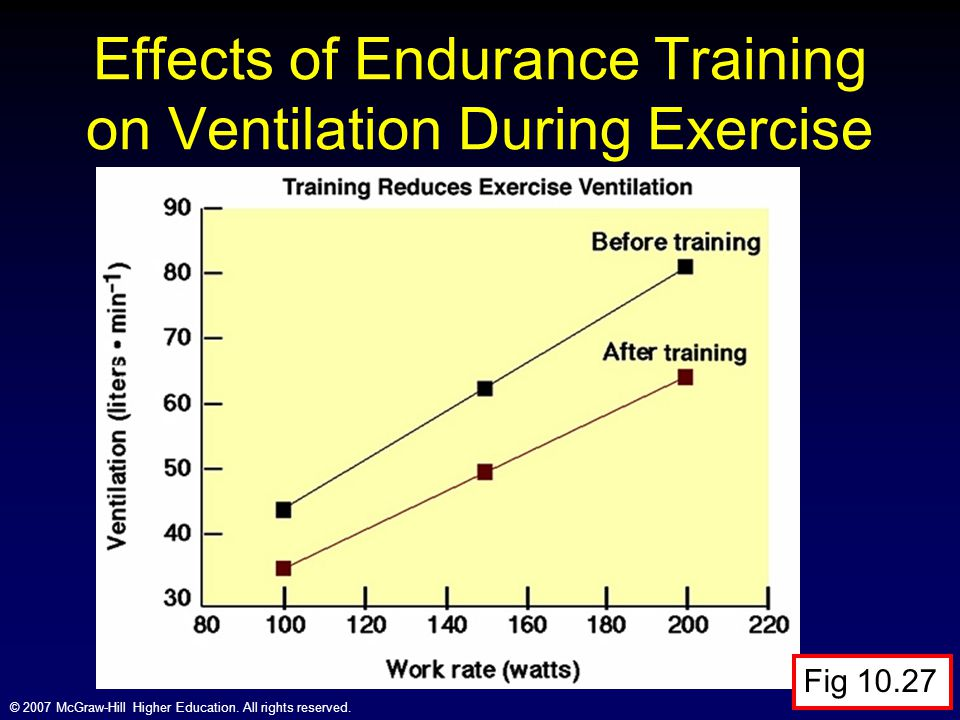 Effects of Endurance Training on Ventilation During Exercise