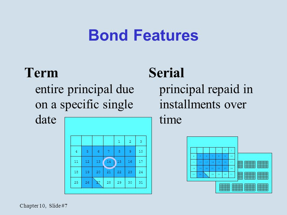 Bond Features Term entire principal due on a specific single date