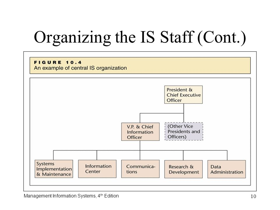 Organizing the IS Staff (Cont.)