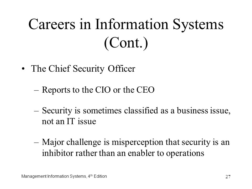 Careers in Information Systems (Cont.)