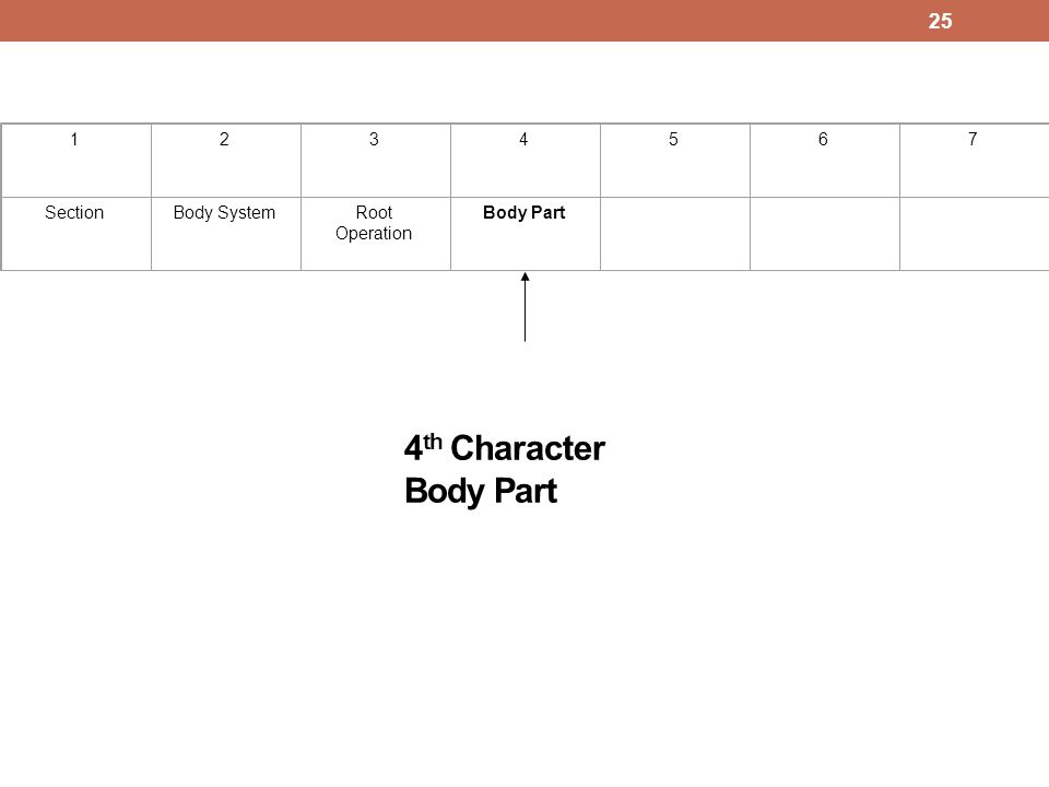 4th Character Body Part 1 2 3 4 5 6 7 Section Body System