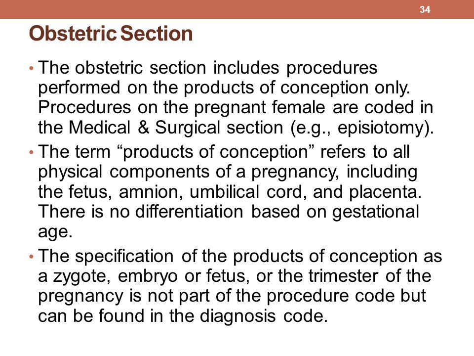 Obstetric Section