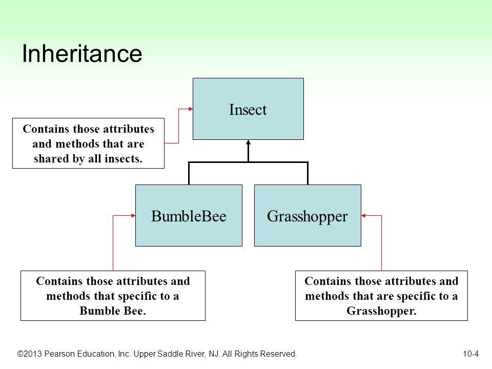 Inheritance Insect BumbleBee Grasshopper