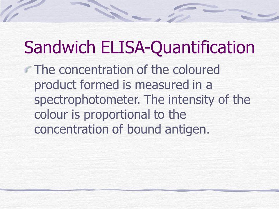 Sandwich ELISA-Quantification