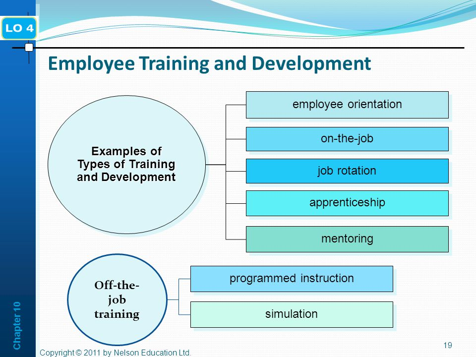 Difference Between Training & Management Development